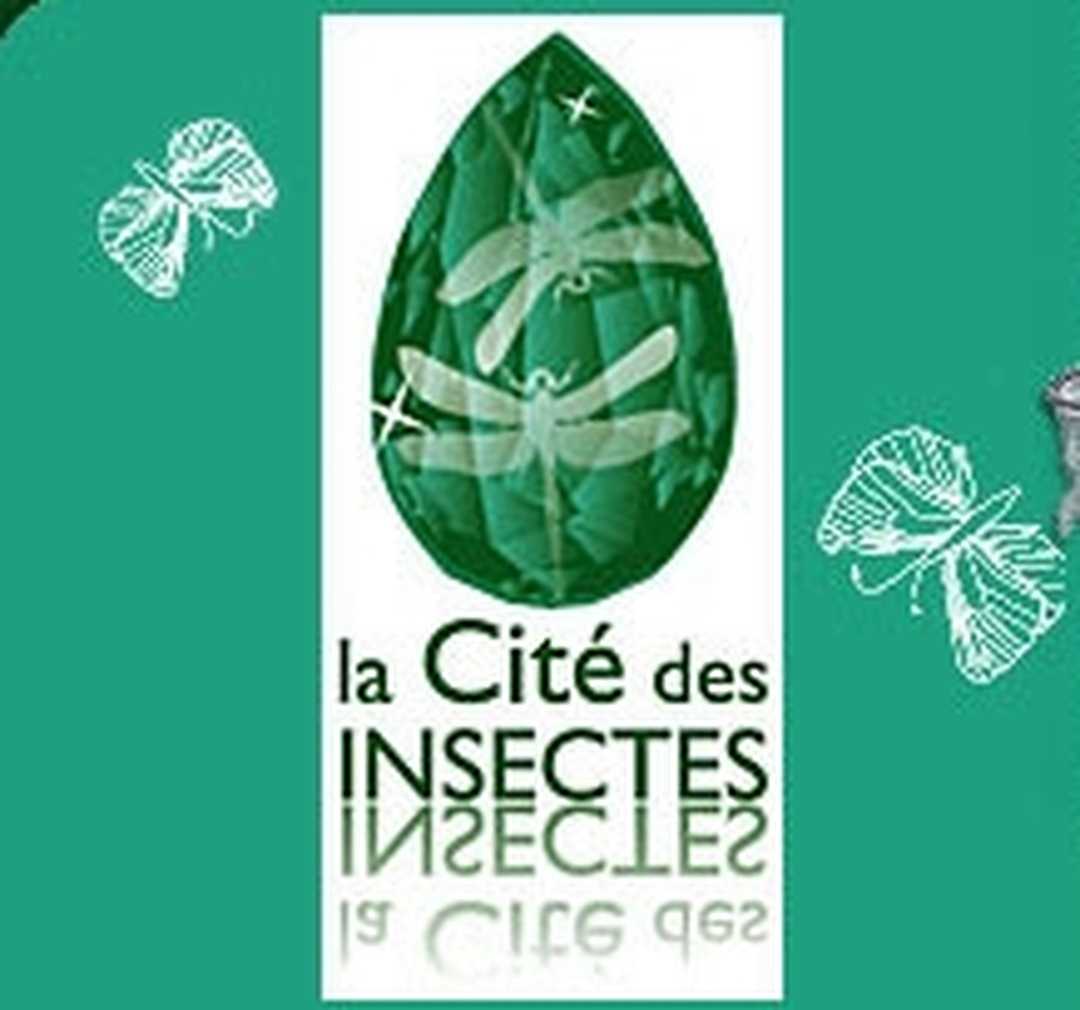 Photo of the February 5, 2016 6:51 PM, Micropolis Cité des Insectes, Le Bourg, 12780 Saint-Léons, France