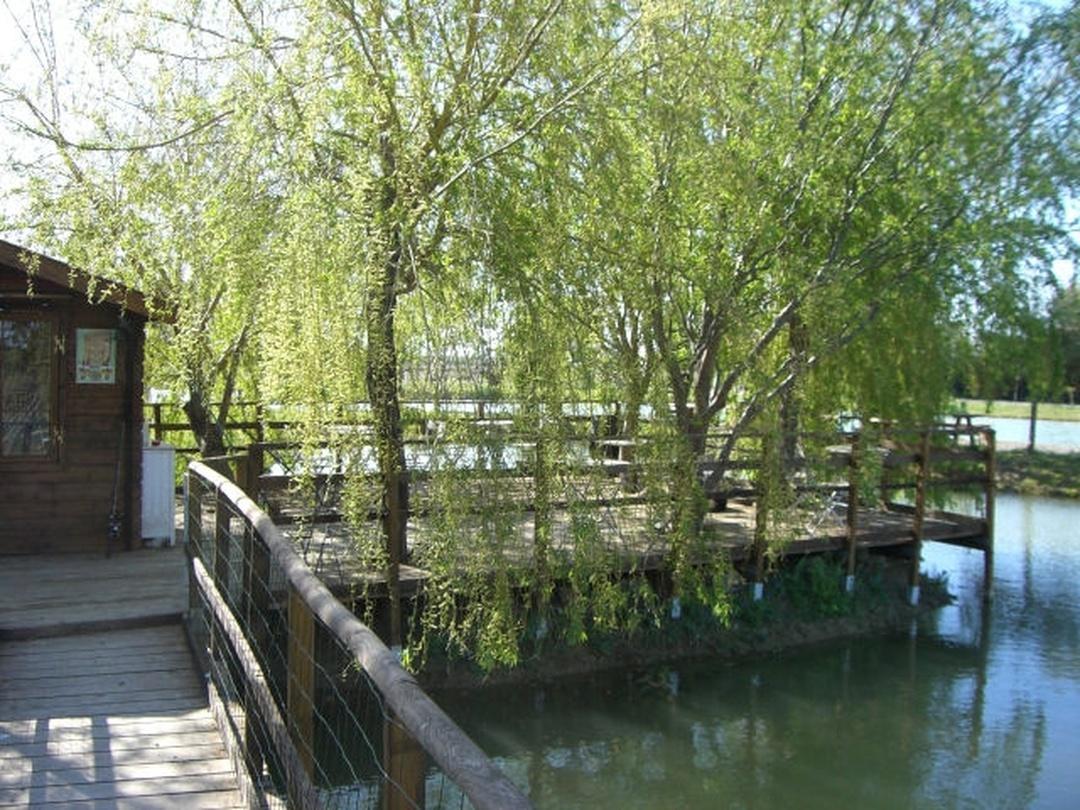 Park - Etang De Pêche À La Truite Sans Permis , Aimargues