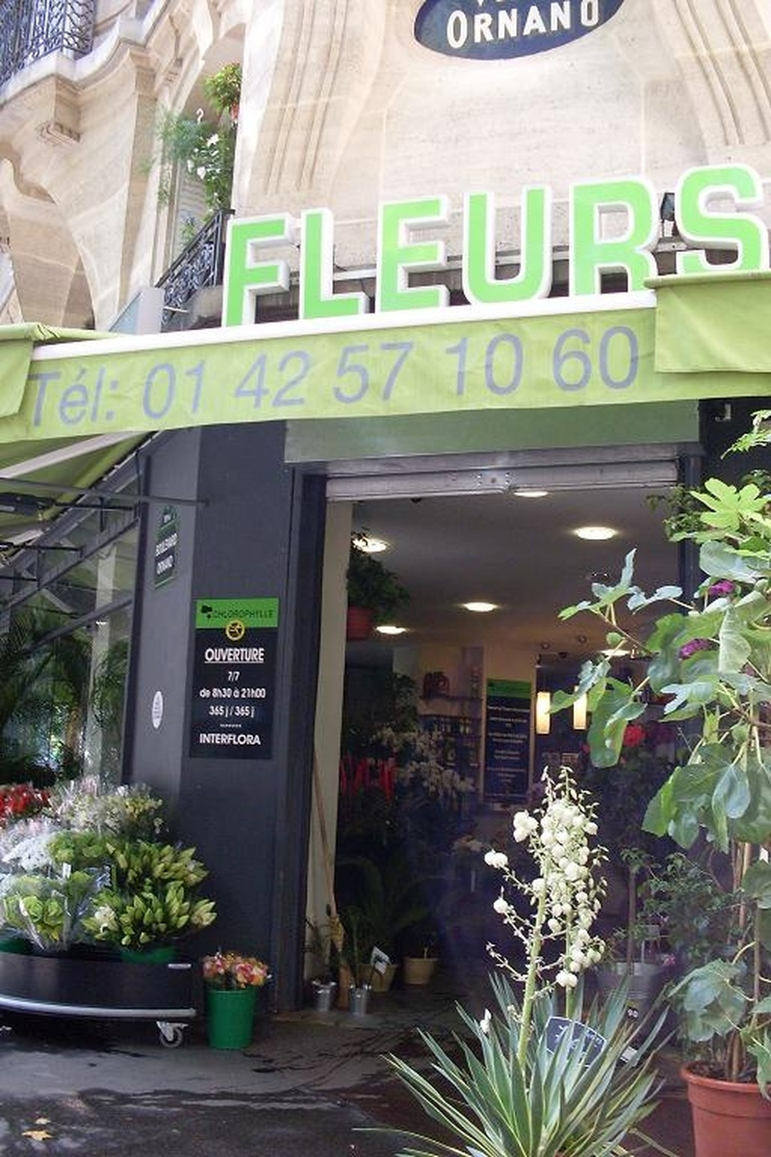 Foto vom 5. Februar 2016 18:50, Chlorophylle, 59 Boulevard Ornano, 75018 Paris, Frankreich