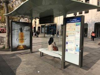 Foto del 27 de octubre de 2016 12:46, Rond-Point des Champs-Elysees, 75008 Paris, France