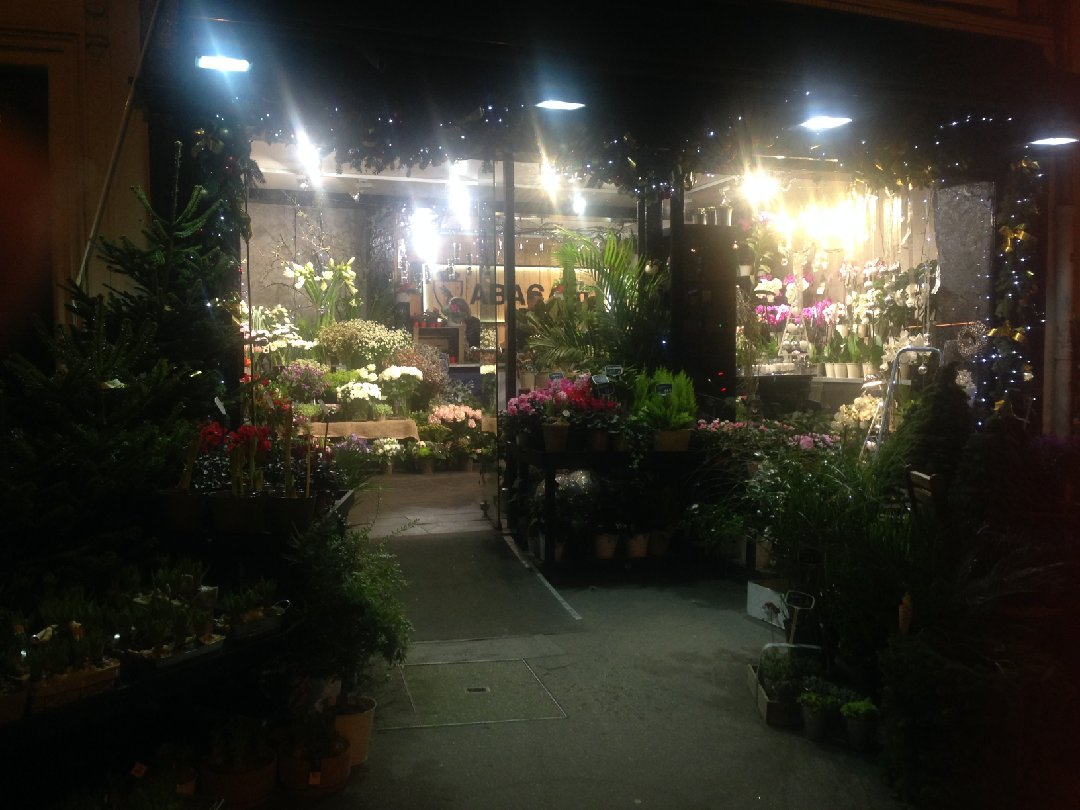 Photo du 26 novembre 2016 17:28, Féerie Florale, 92 Avenue de Saint-Mandé, 75012 Paris, France
