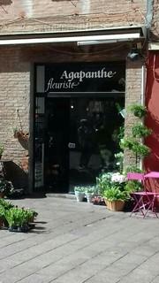Foto del 18 de septiembre de 2017 13:18, Agapanthe, 5 Place Gambetta, 66000 Perpignan, France