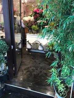 Foto vom 13. September 2017 11:55, Antique Garden, 214 Rue de Grenelle, 75007 Paris, France