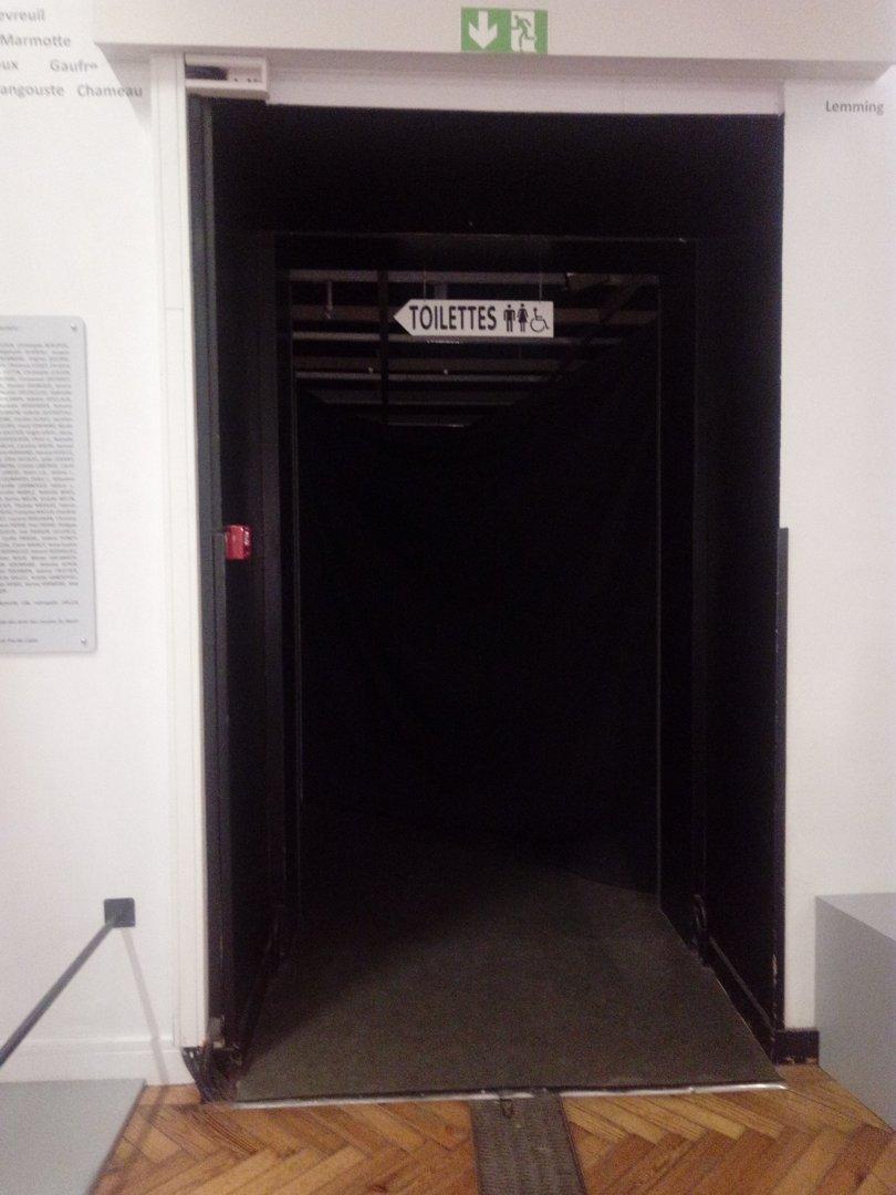 Photo du 28 octobre 2016 20:50, Musée d'Histoire Naturelle de Lille, 19 Rue de Bruxelles, 59000 Lille, France