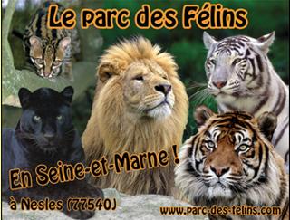 Photo du 5 février 2016 18:48, The Feline Park, Domaine de la Fortelle, 77540 Lumigny-Nesles-Ormeaux, Francia