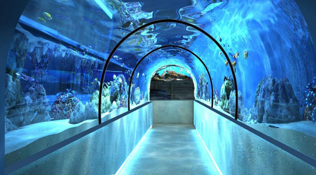 Photo of the November 20, 2017 11:55 AM, Aquarium Barcelona, Moll d'Espanya del Port Vell, s/n, 08039 Barcelona, Spain