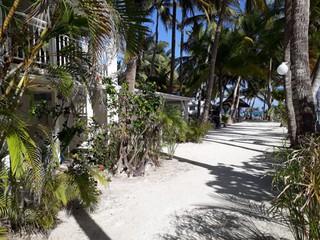 Photo du 12 mars 2018 19:46, L'EDEN D'EOLE, Marineland Lieu dit Castaing, SAINTE ANNE 97180, Guadeloupe