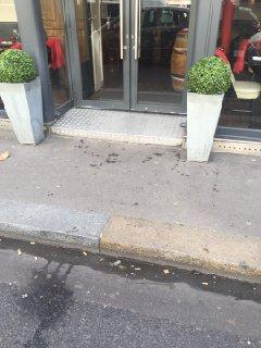 Foto del 24 de febrero de 2017 10:03, La Brasserie Italienne, 73 Avenue Kléber, 75116 Paris, France