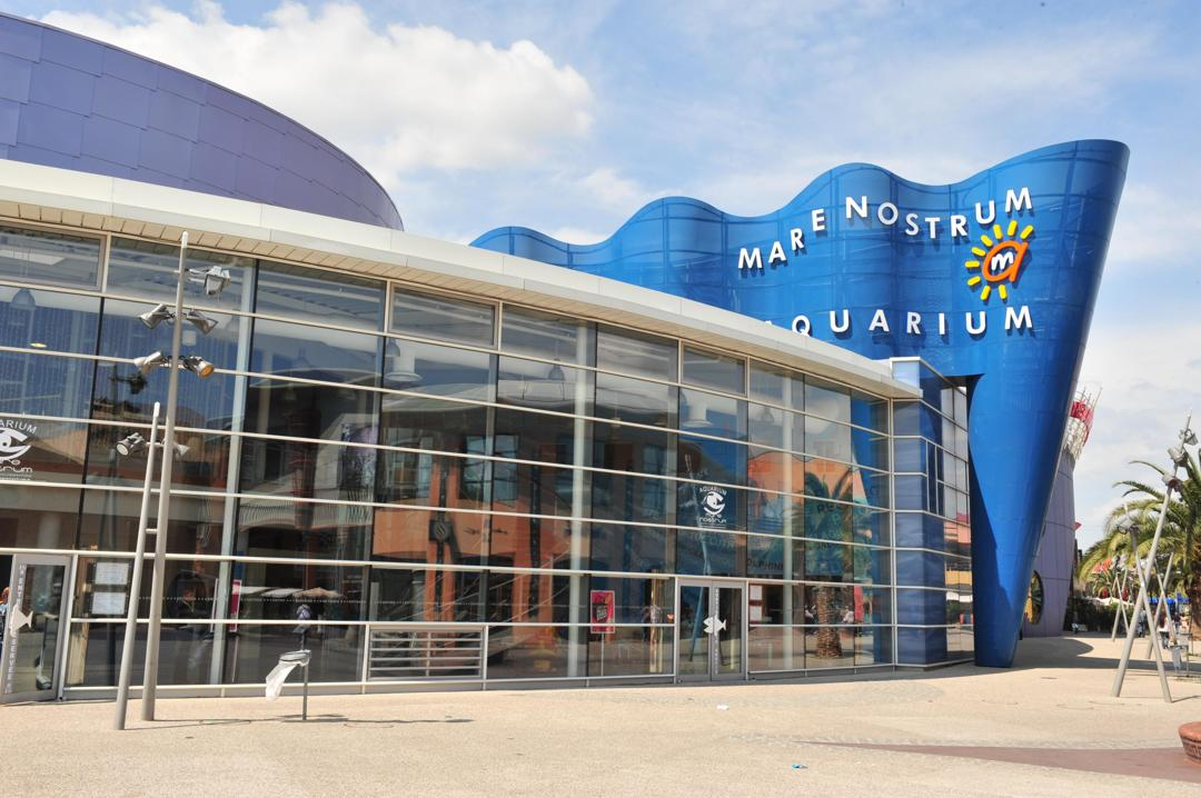 Foto del 5 de febrero de 2016 18:51, Aquarium Mare Nostrum, Centre commercial Odysseum, Allée Ulysse, 34000 Montpellier, Francia
