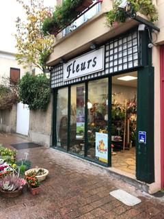 Photo of the November 17, 2017 9:08 AM, Les Pipelettes Fleuries, 5 Place du Cardinal Mercier, 95880 Enghien-les-Bains, France