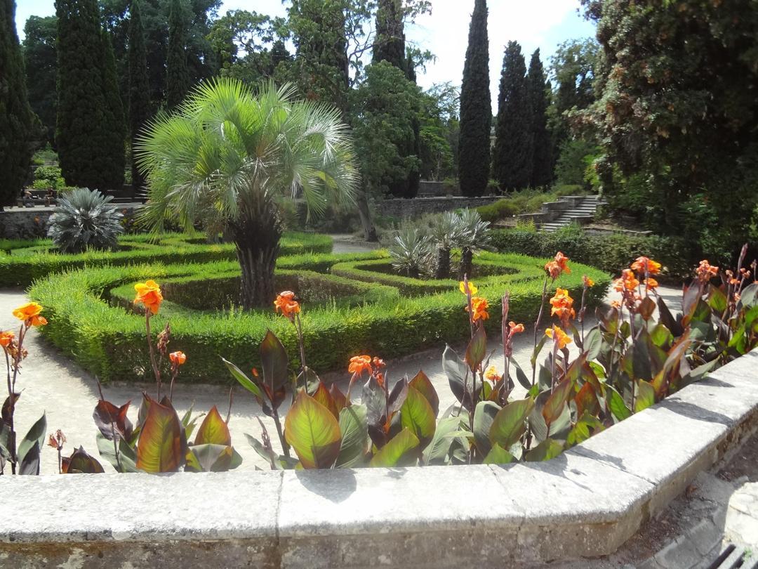 Park - Jardin des plantes , Montpellier