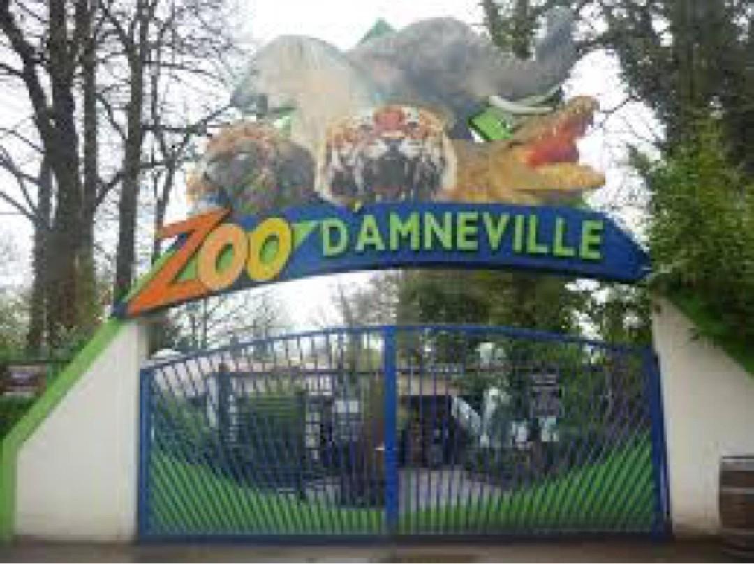 Foto del 13 de noviembre de 2017 16:19, Zoo d'Amnéville, 1 Rue du Tigre, 57360 Amnéville, Francia