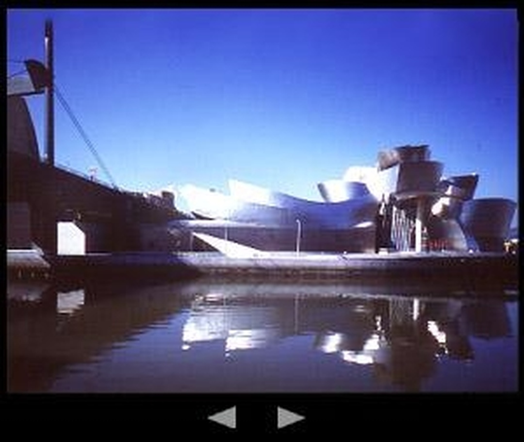 Museo - Museo Guggenheim Bilbao , Bilbo